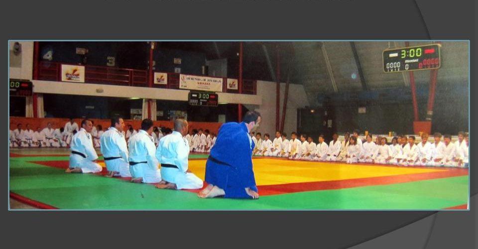 judo-bonnefoy-lapujade-croix-daurade-pptx48